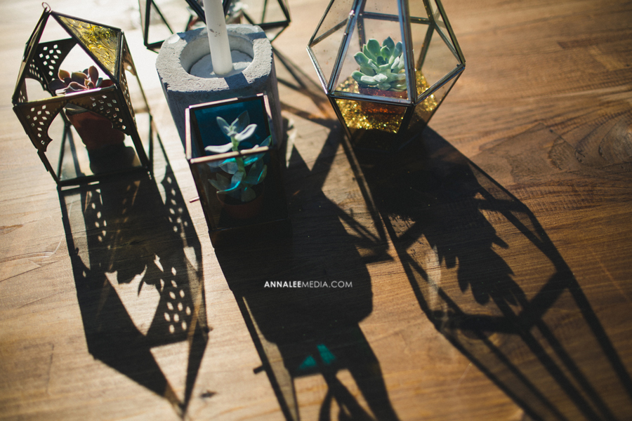 32-oklahoma-wedding-photographer-backyard-alexa-dumas-brandon-land-modern-graphic-designer-outdoor-summer-trendy-hipster-rustic-reception-table-decor-succulents