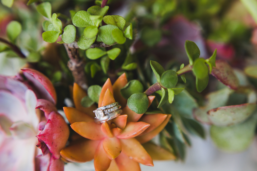 30b-wedding-photographer-okc-ok-los-angeles-la-socal-succulents