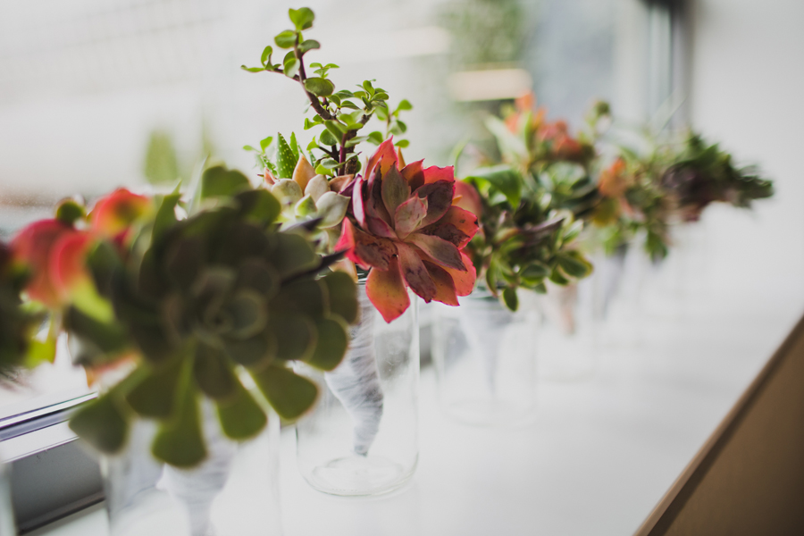 32-wedding-photographer-okc-ok-los-angeles-la-socal-succulents
