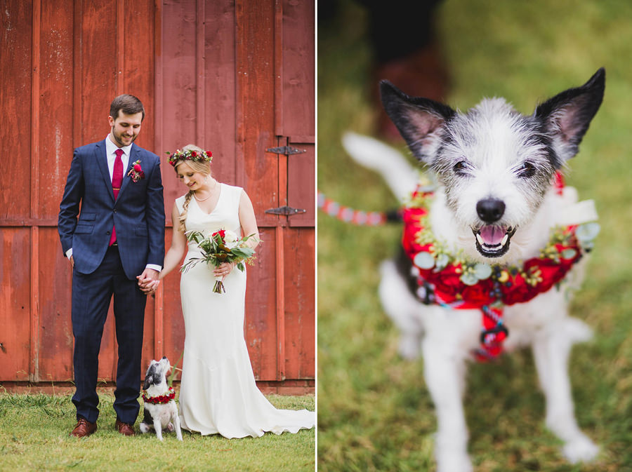 11-harn-homestead-okc-wedding-photographer-bride-groom-dog-los-angeles-barn