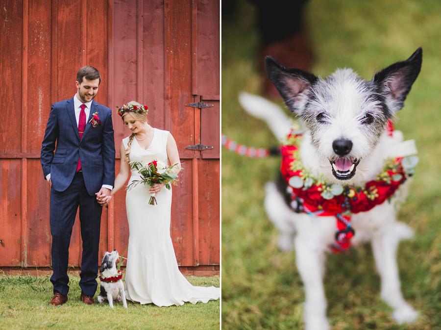 11-harn-homestead-okc-wedding-photographer-bride-groom-dog-los-angeles-barn