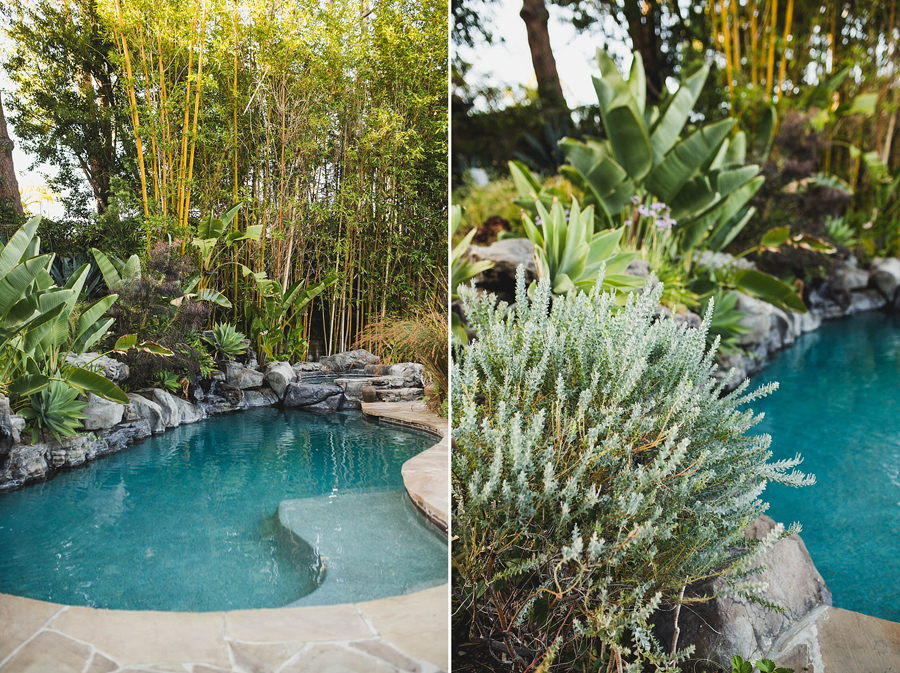 beverly-hills-la-wedding-photographer-private-backyard-carol-dunn-guy-long-wedding-14