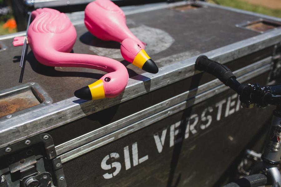 1-silverstein-warped-tour-2015-okc-pink-flamingos